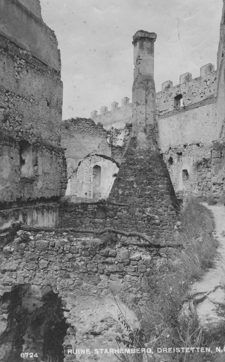 Detail aus der Ruine Starhemberg